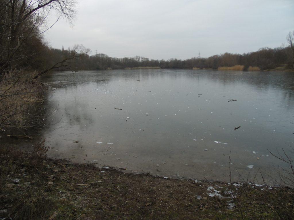 Reuschenberger See im Winter
